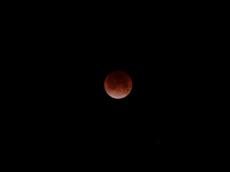 Lunar Eclipse - 月食