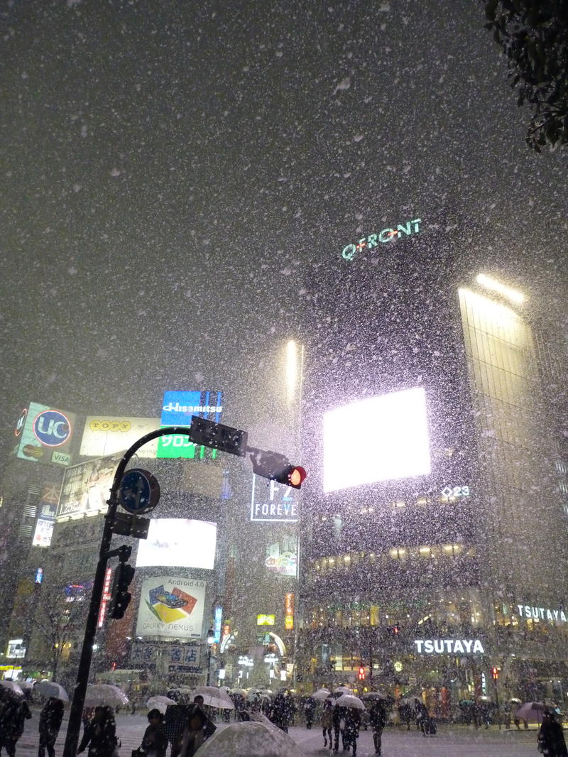 Snowy Night in Shibuya - 渋谷の雪
